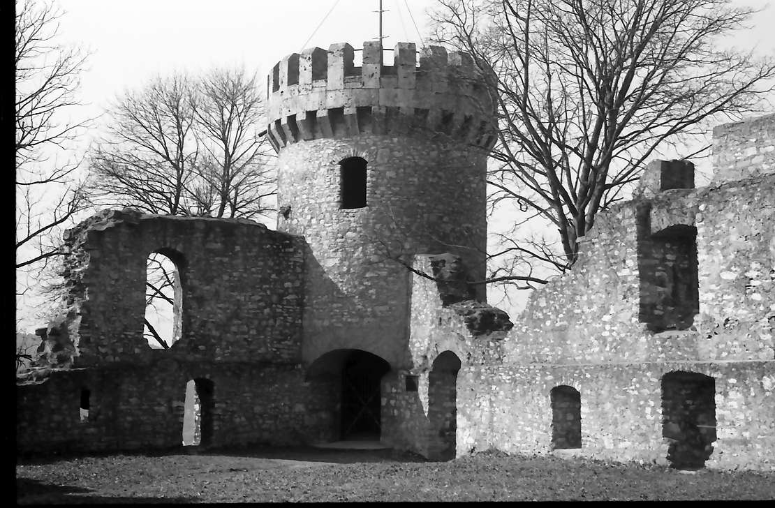 Tuttlingen: Turm und Ruine vom Innenhof, Bild 1