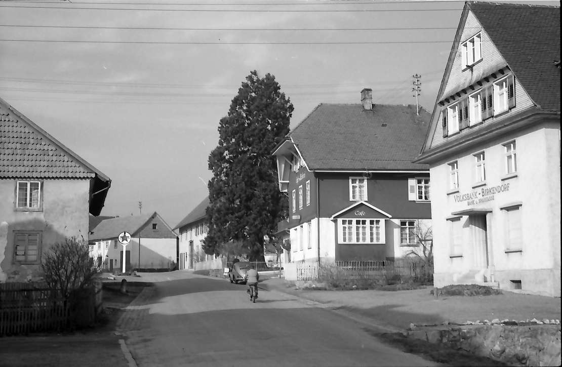 Birkendorf: Ortsstraße mt Eibe, Bild 1
