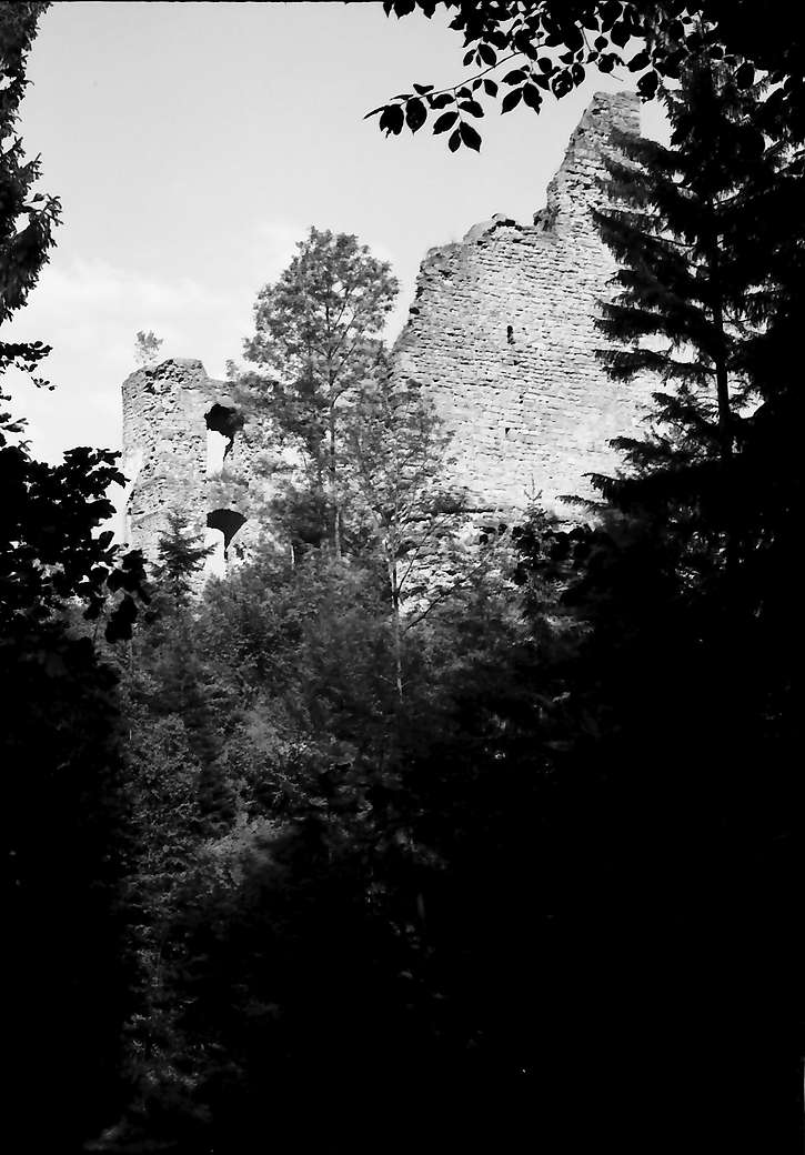 Herrenzimmern: Burg Herrenzimmern vom hinteren Burgplatz, Bild 1