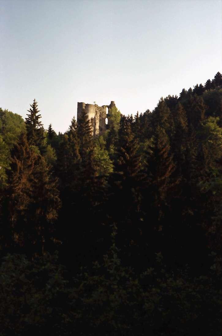 Herrenzimmern: Burg Herrenzimmern, seitlich von der Straße, Bild 1