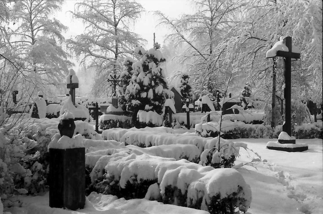 Freiburg, Günterstal: Friedhof Günterstal im Schnee (rechts Kreuz), Bild 1