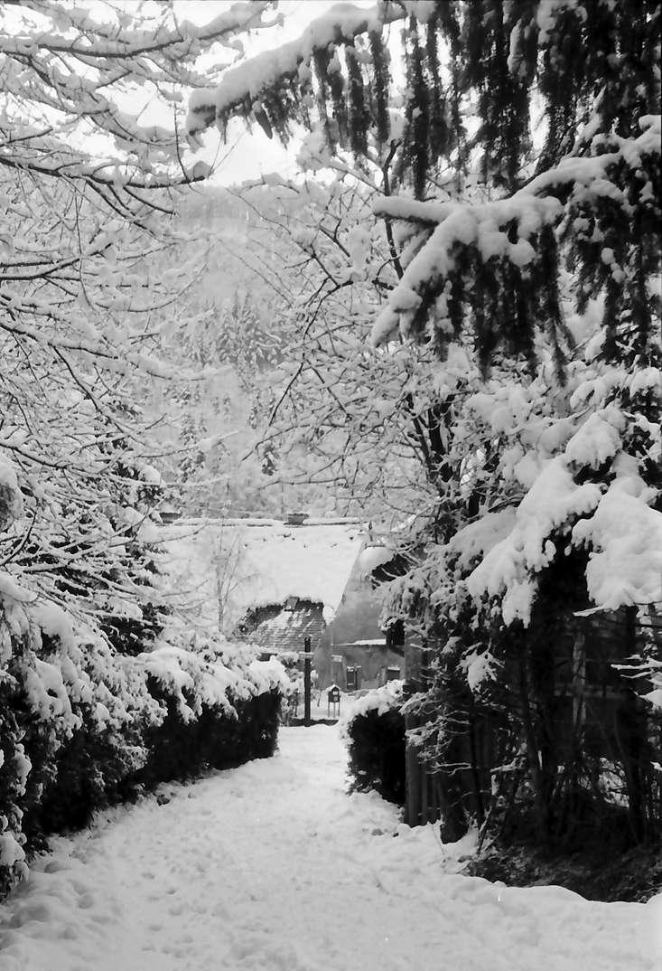 Freiburg, Günterstal: Günterstal im Schnee, Rehhagweg nach unten, Bild 1