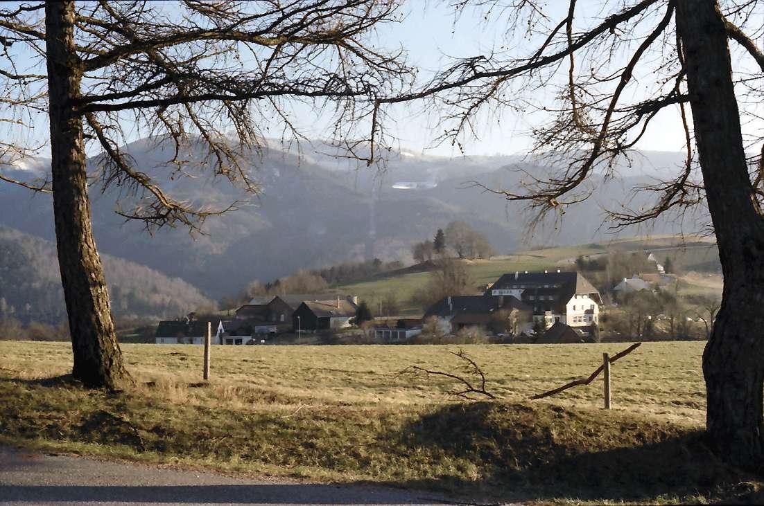 Horben: Schauinsland von der Luisenhähe aus Horben, Bild 1