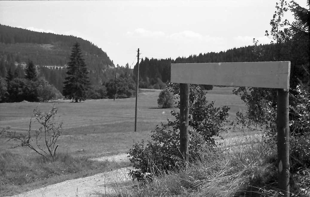 Wutachtal: Wutachtalsperre; Wutachtal mit Hochfirst, von der Kapplerstraße mit Markierung, Bild 1