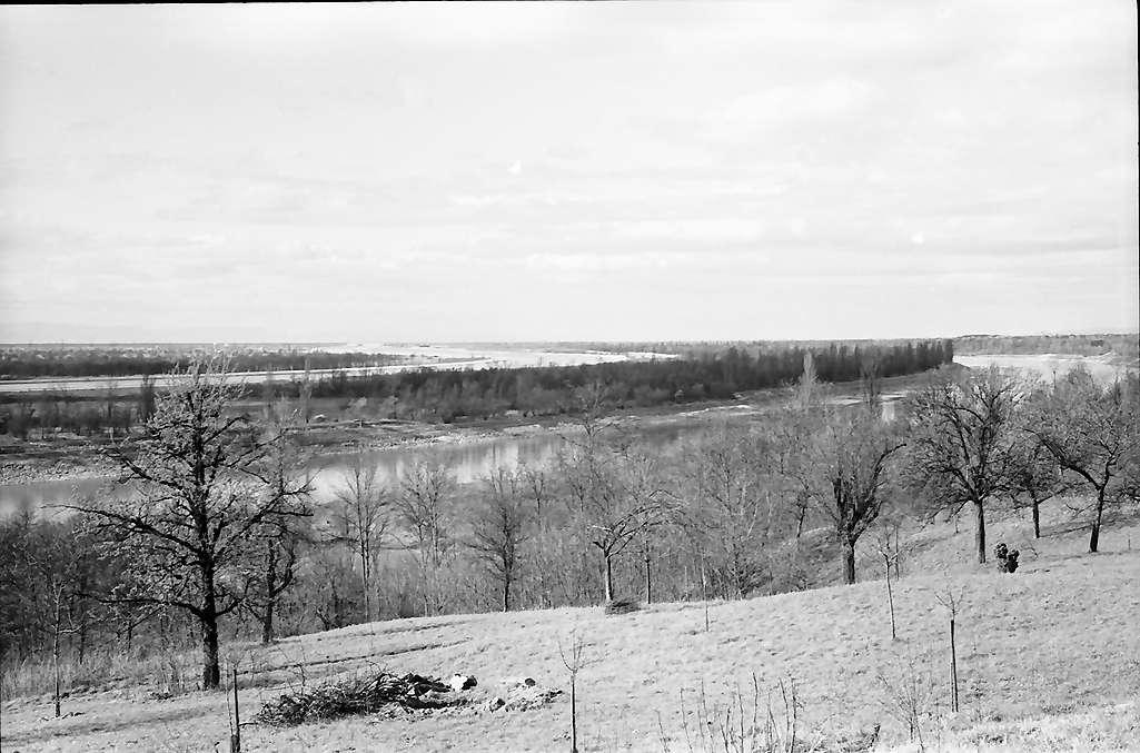 Rheinweiler: Rheinseitenkanal bei Rheinweiler, Bild 1