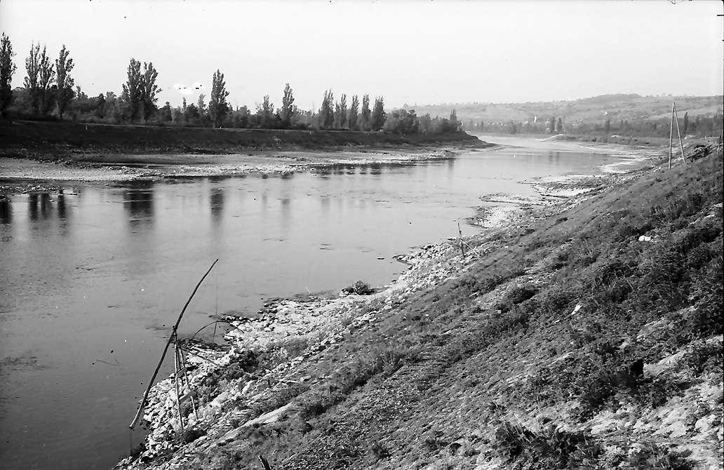 Rheinweiler: Altrhein mit Niederigwasser, Bild 1
