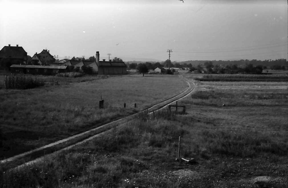Friedlingen: Gelände der Autobahnstraße: nach Norden Weg, Bild 1
