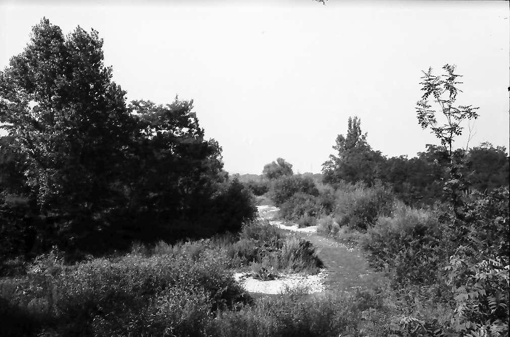 Eimeldingen: Kanderlauf vor der Mündung bei Eimeldingen an der Trasse der Autobahn, Bild 1