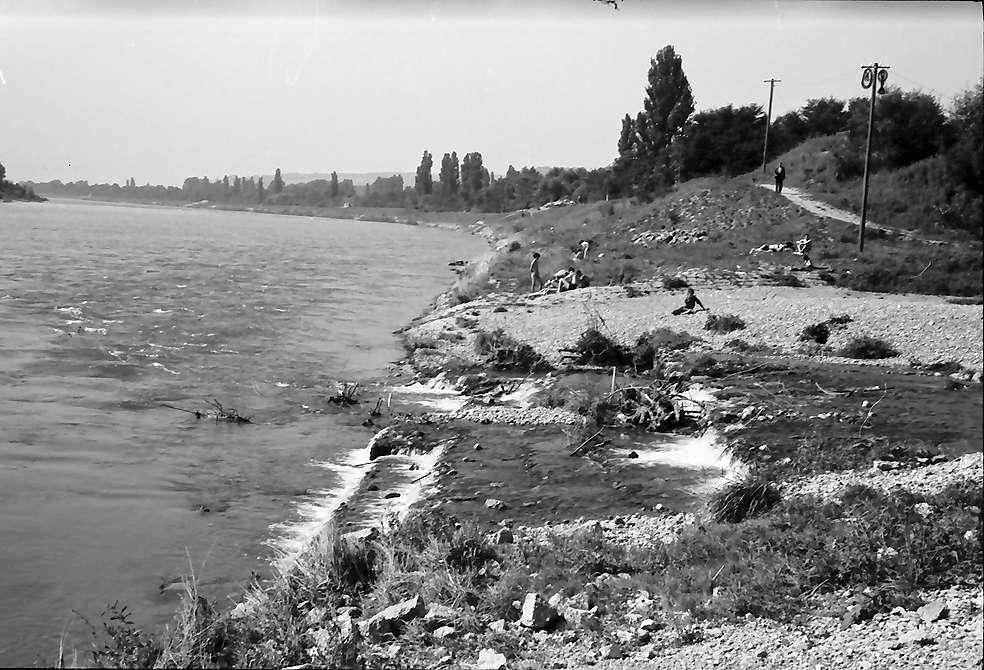 Eimeldingen: Kandermündung und Rhein, Bild 1