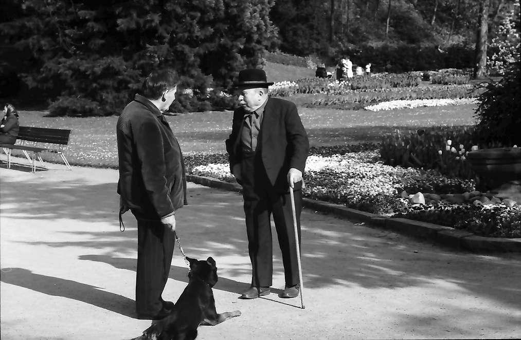 Lörrach, Tüllingen: Zwei Typen mit Hund im Rosenfelspark, Bild 1