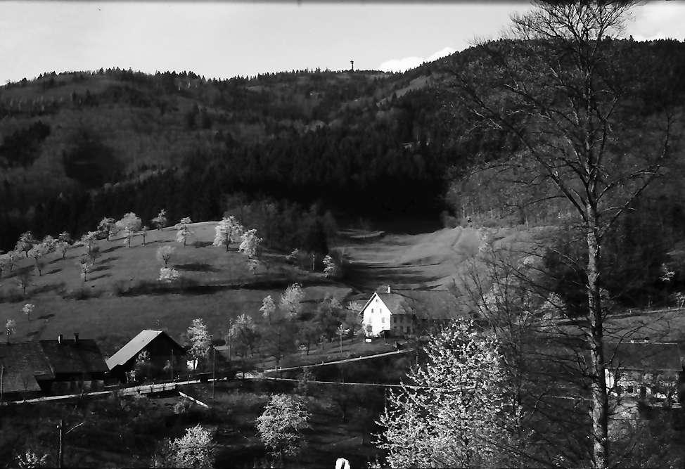 Raitbach: Raitbach und Hohe Möhr, Bild 1