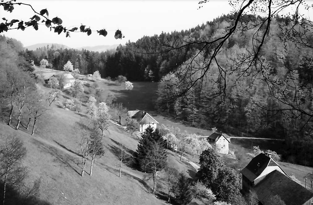 Raitbach: Kehrengrund, Bild 1