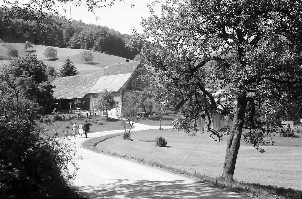 Endenburg: Tal mit Straße und Hof, Bild 1