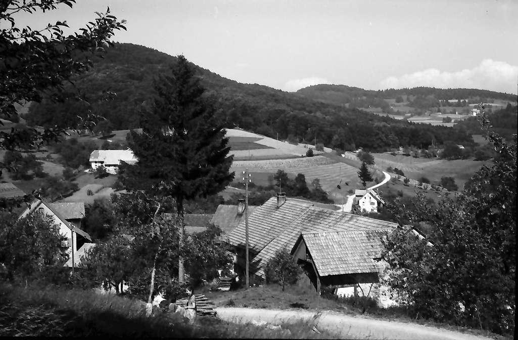 Endenburg: Gasthaus Pflug, von oben, Bild 1