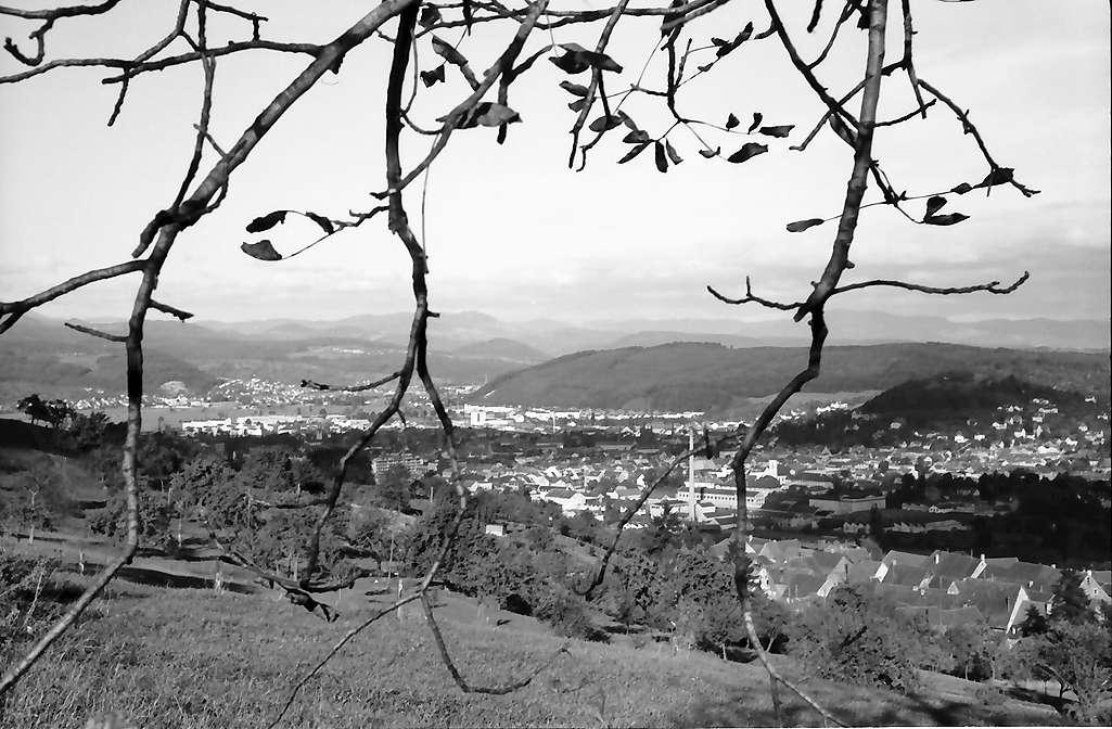 Lörrach, Tüllingen: Blick durch Baumäste von der Tüllinger Höhe auf Lörrach, Bild 1