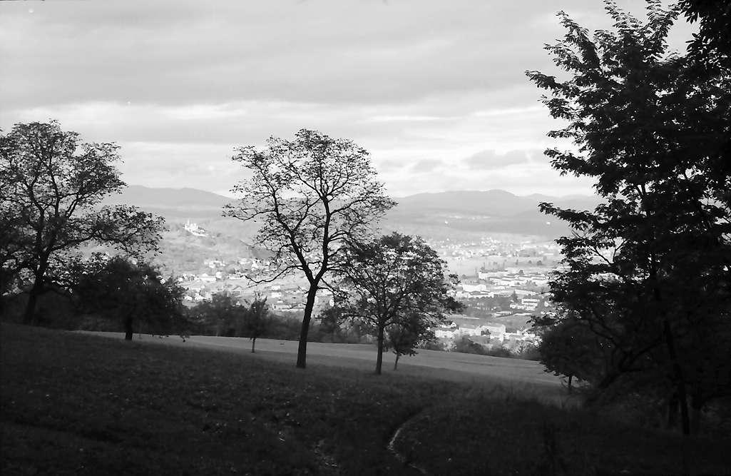 Lörrach, Tüllingen: Aus Wald auf Wiesental mit Rötteln und Stadt, Bild 1
