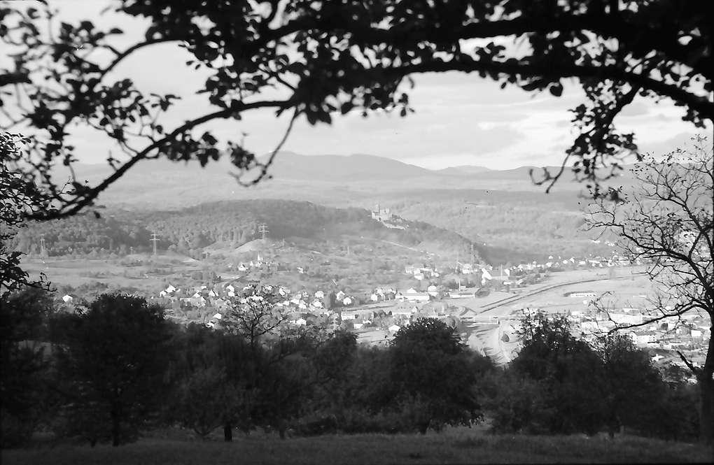 Lörrach, Tüllingen: Blick auf Stetten und Riehen, Vordergrund Ast, Bild 1