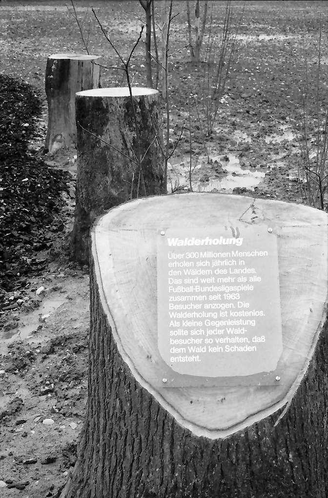 Lörrach: Landesgartenschau, Eröffnung; Schild: Walderholung mit abgesägten Baumstümpfen, Bild 1