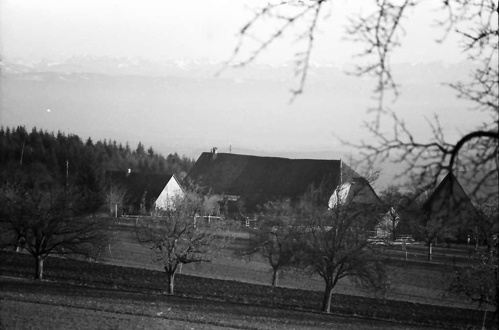 Markdorf: Gehöft und Blick zu den Allgäuer Alpen, Bild 1