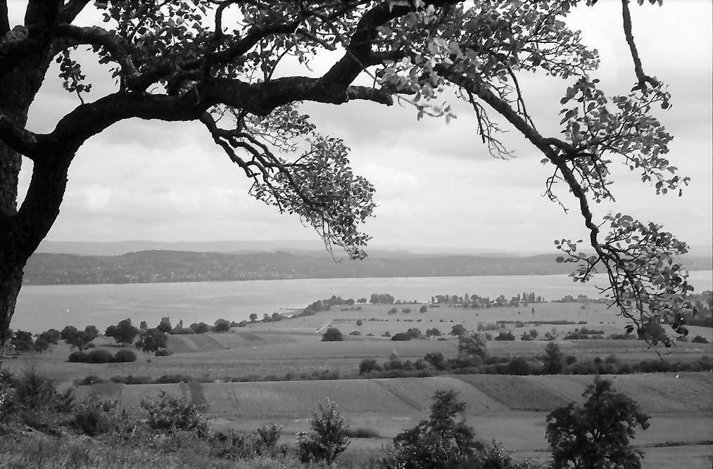 Wallhausen: Fernblick über den Überlinger See, Bild 1