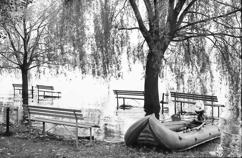 Sipplingen: Überschwemmtes Ufer in Sipplingen, Bild 1