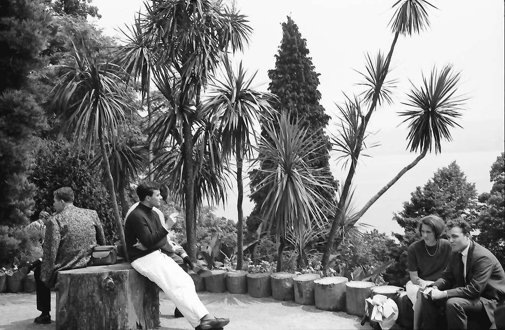 Mainau, Insel Mainau: Park mit Palmen, Bild 1