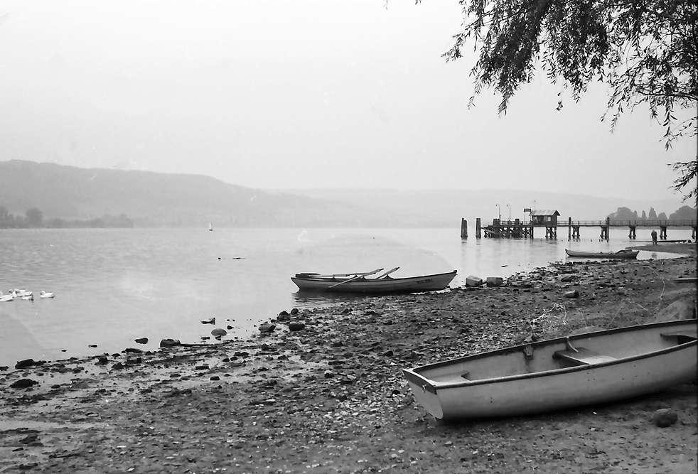 Wangen: Ausgetrockneter Untersee bei Wangen, Bild 1