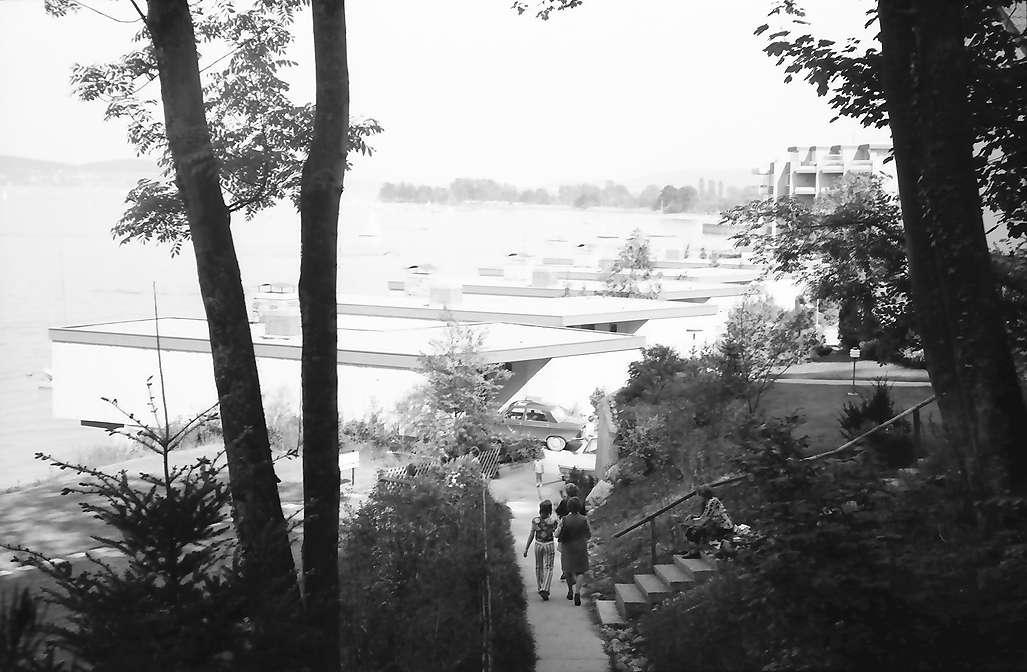 Wallhausen: Vom Waldhang auf Bungalows, Bild 1