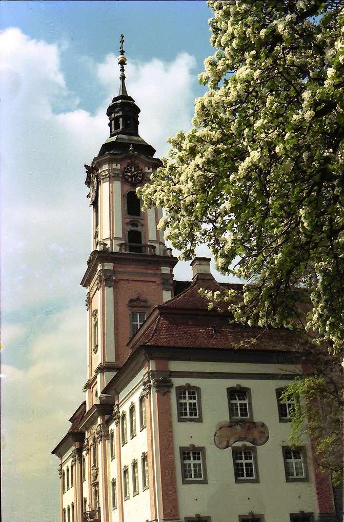 Birnau: Kirche Birnau, Kirchturm mit Blütenbaum, Bild 1