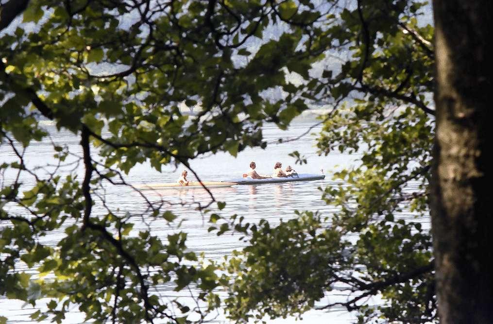 Mainau, Insel Mainau: Paddler hinter Bäumen, Bild 1