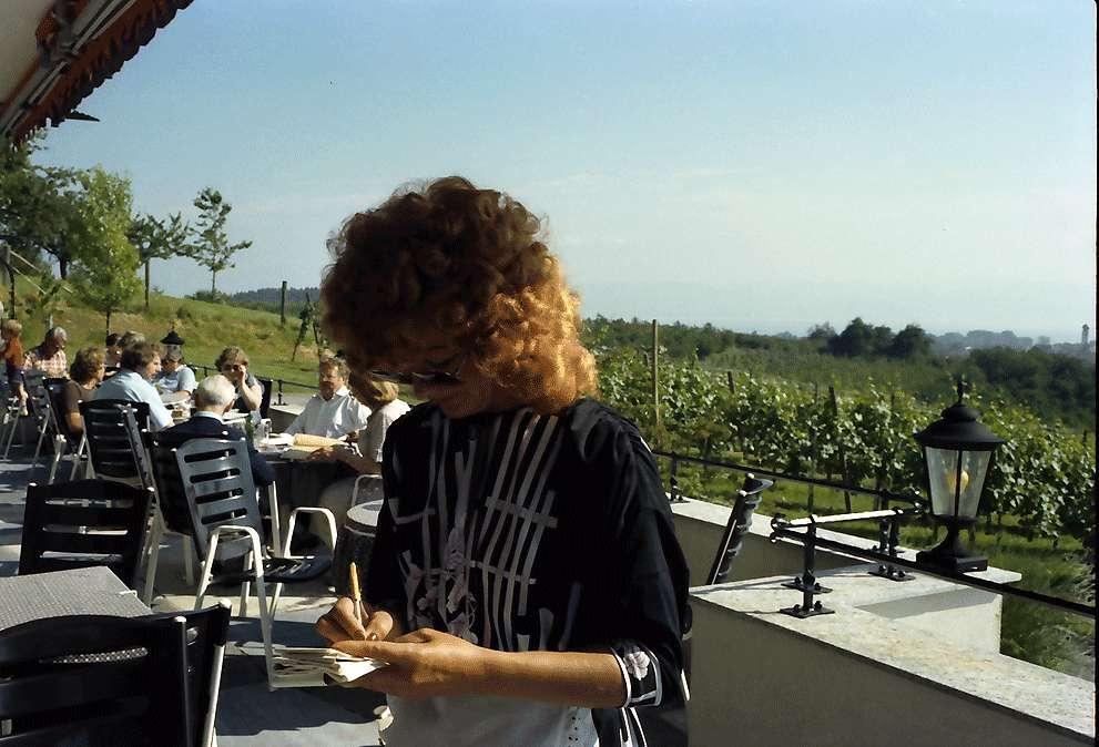 Kressbronn: Weingut Torggel , Terrasse und Bogen zum Parkplatz, Bild 1