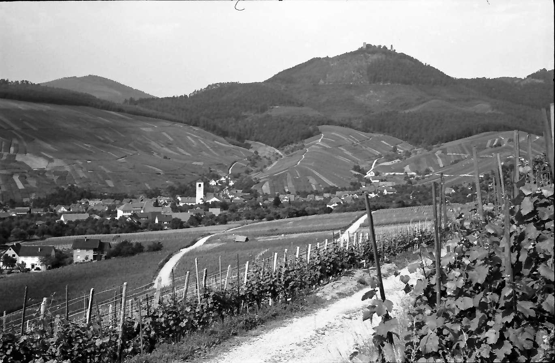 Neuweier: Blick vom Weinberg auf Ort und Yburg, von höher, Bild 1