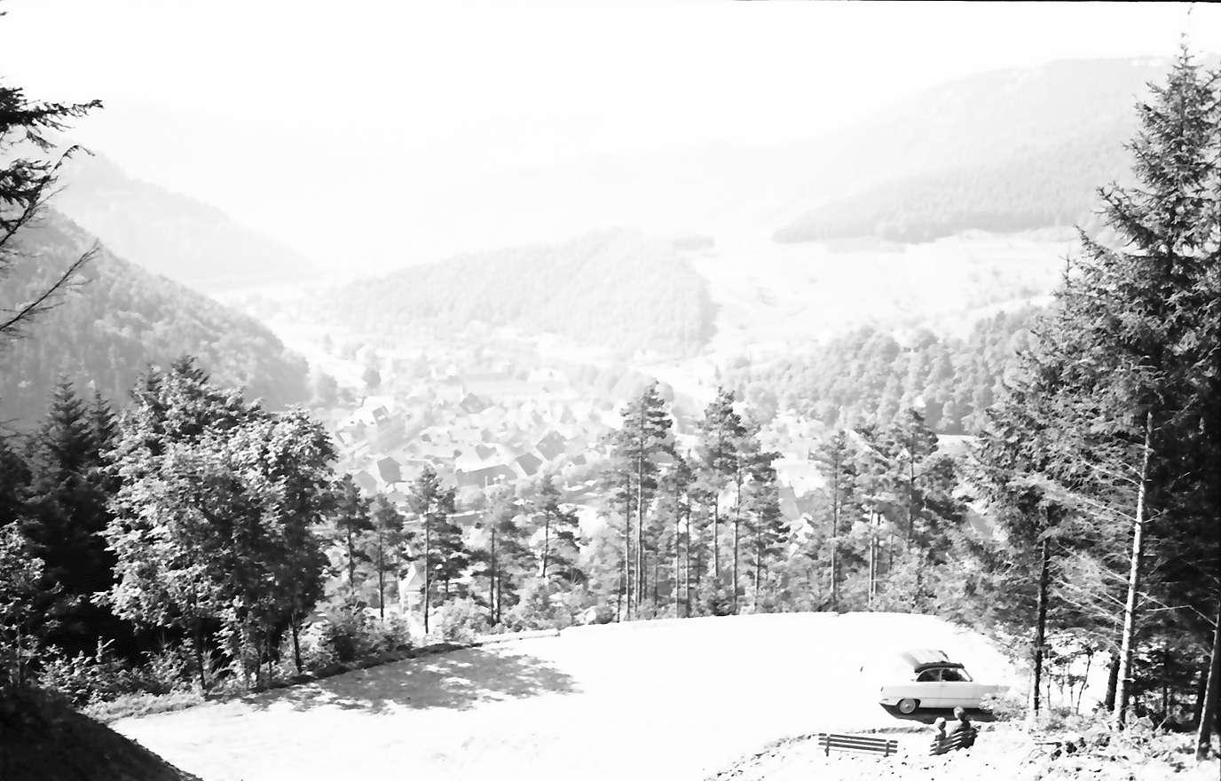 Wolfach: Blick vom Nordhang durch Wald auf Wolfach, Vordergrund Waldstraße und Bank, Bild 1
