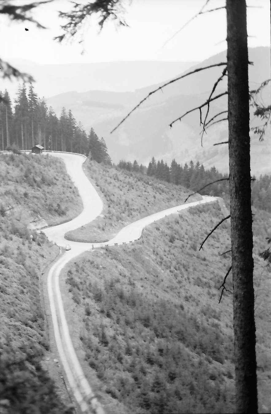 Bad Griesbach: Serpentinen der Straße Bad Griesbach-Alexanderschanze, Bild 1