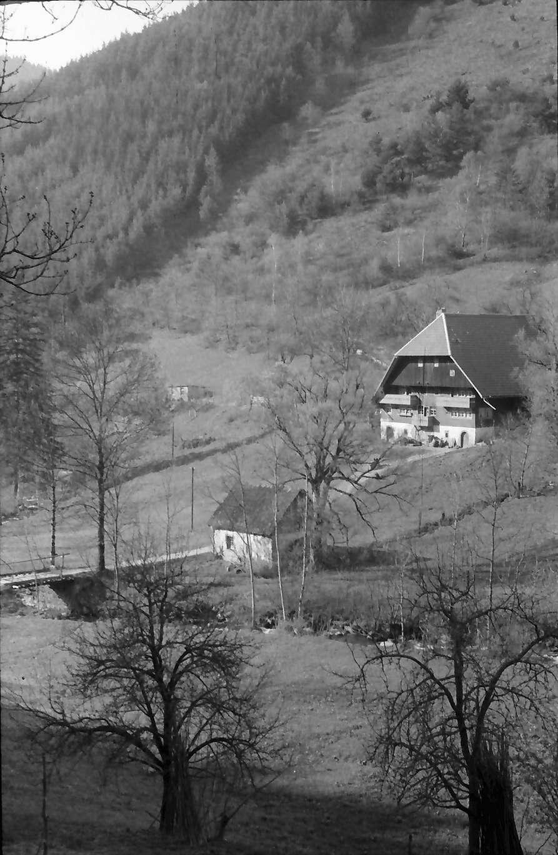 Schramberg-Hornberg: Schwarzwaldhaus an der Straße Schramberg-Hornberg, näher, Bild 1