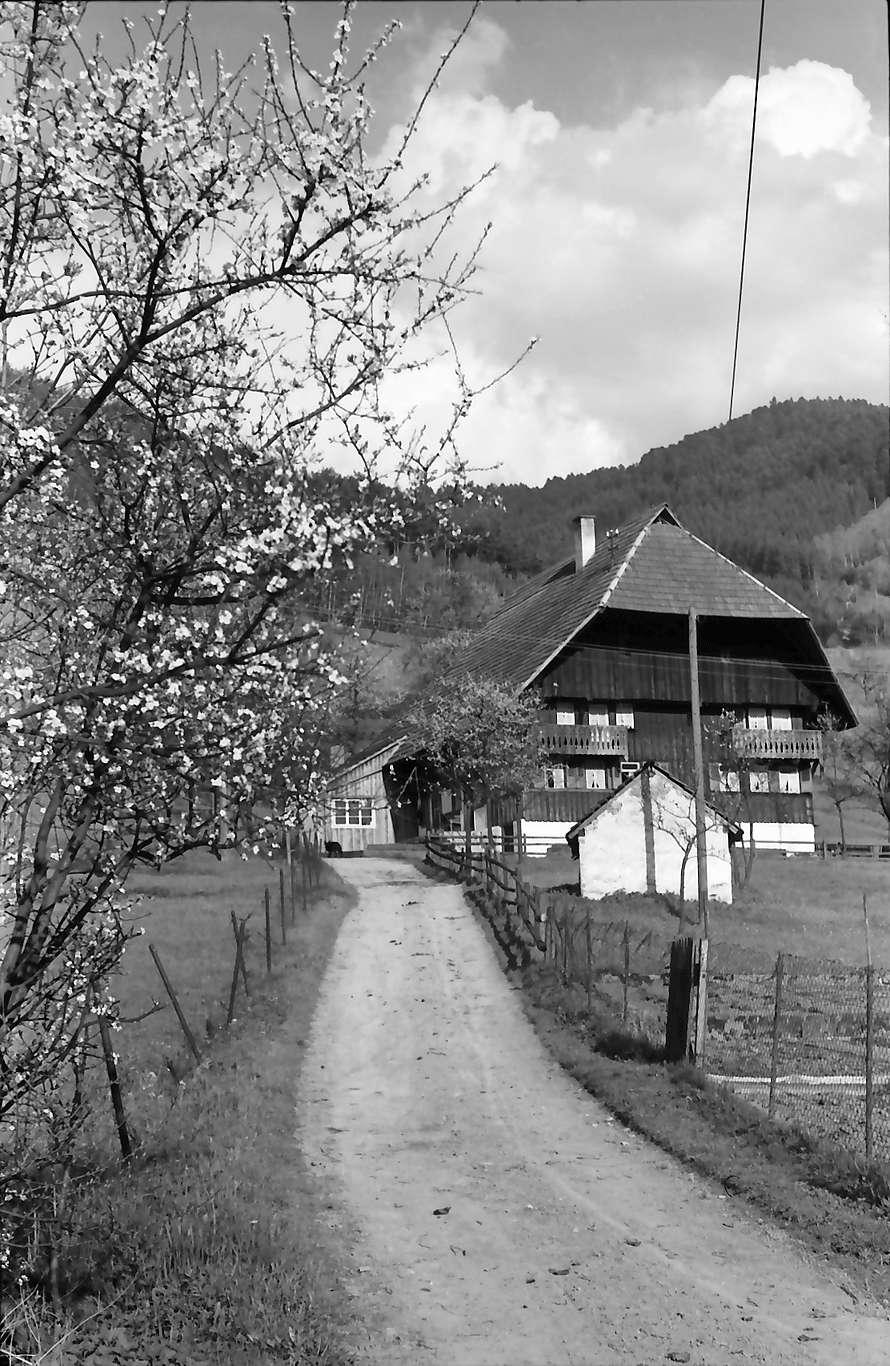 Gutach: Schwarzwaldhaus an der Schwarzwaldbahn bei Gutach, Bild 1