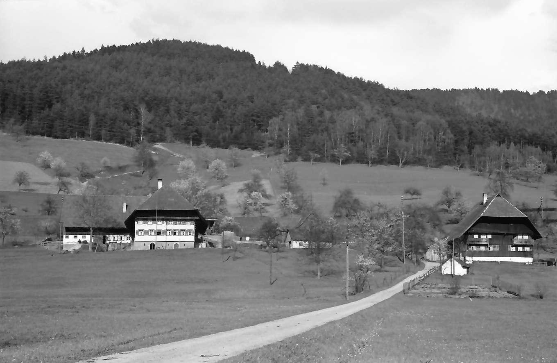 Gutach: Weg und zwei Schwarzwaldhäuser, Bild 1