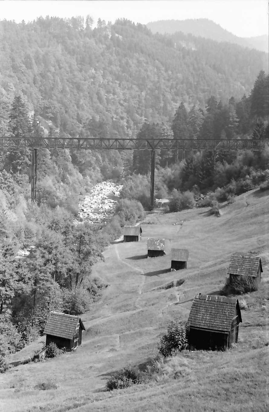 Forbach: Bahnviadukt über das Murgtal bei Forbach, von Westen, mit Heustadeln, Bild 1