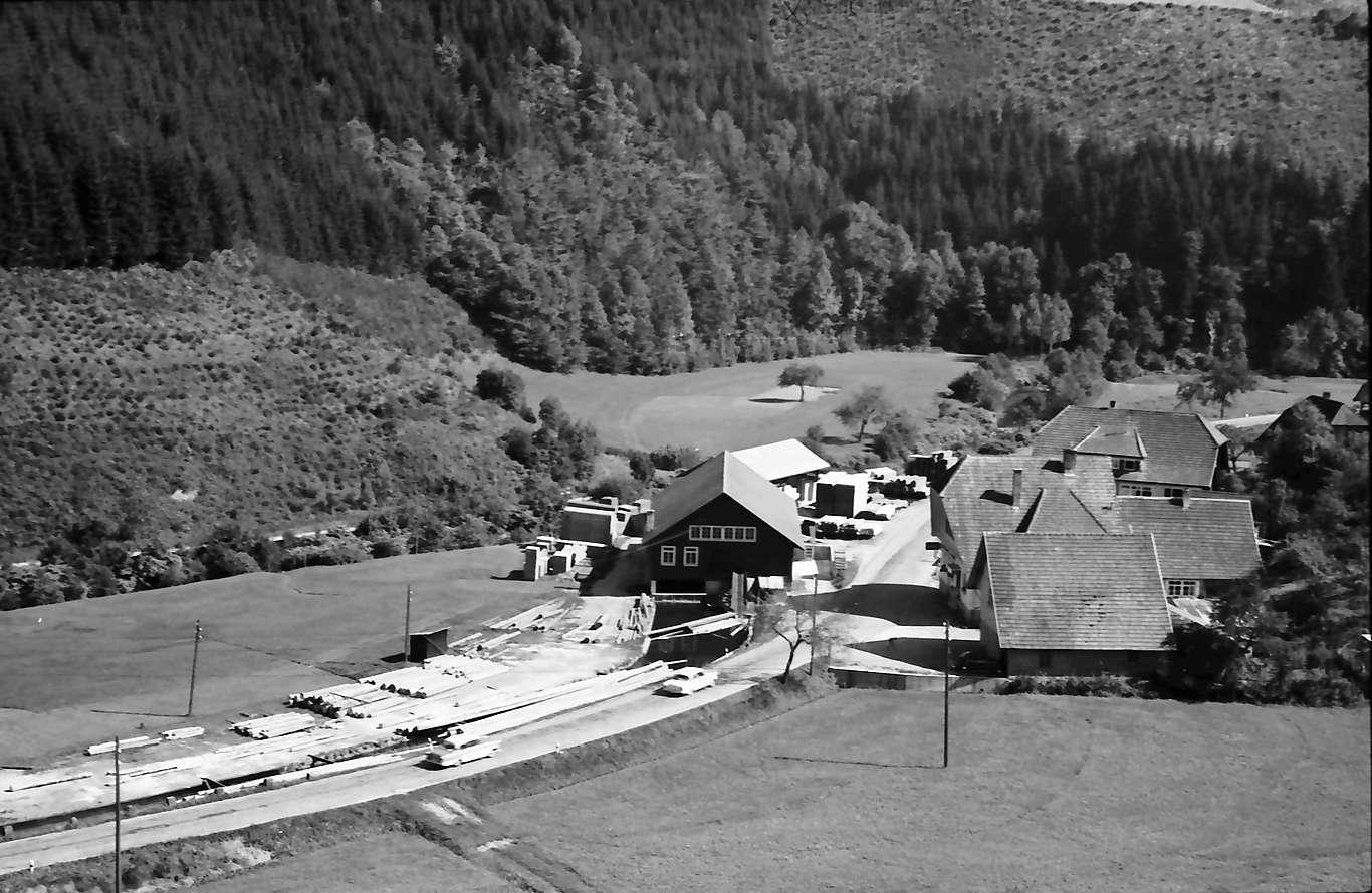 Schapbach: Tal mit Blick auf Schapbach, auf Sägewerk, Ausschnitt, Bild 1