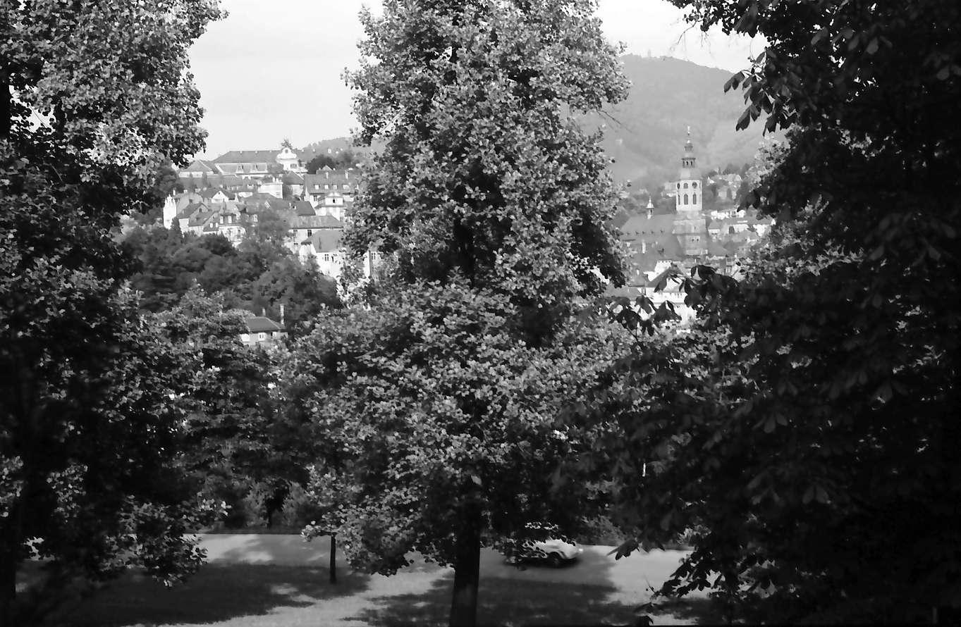 Baden-Baden: Kurpark, Durchblick zwischen Bäumen auf Merkur, Bild 1