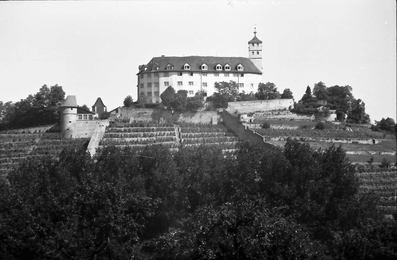 Vaihingen (Enz): Schloss, Bild 1