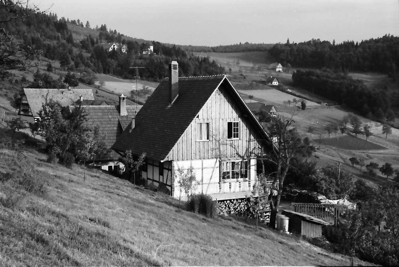 Sasbachwalden: Haus am Hang, Bild 1