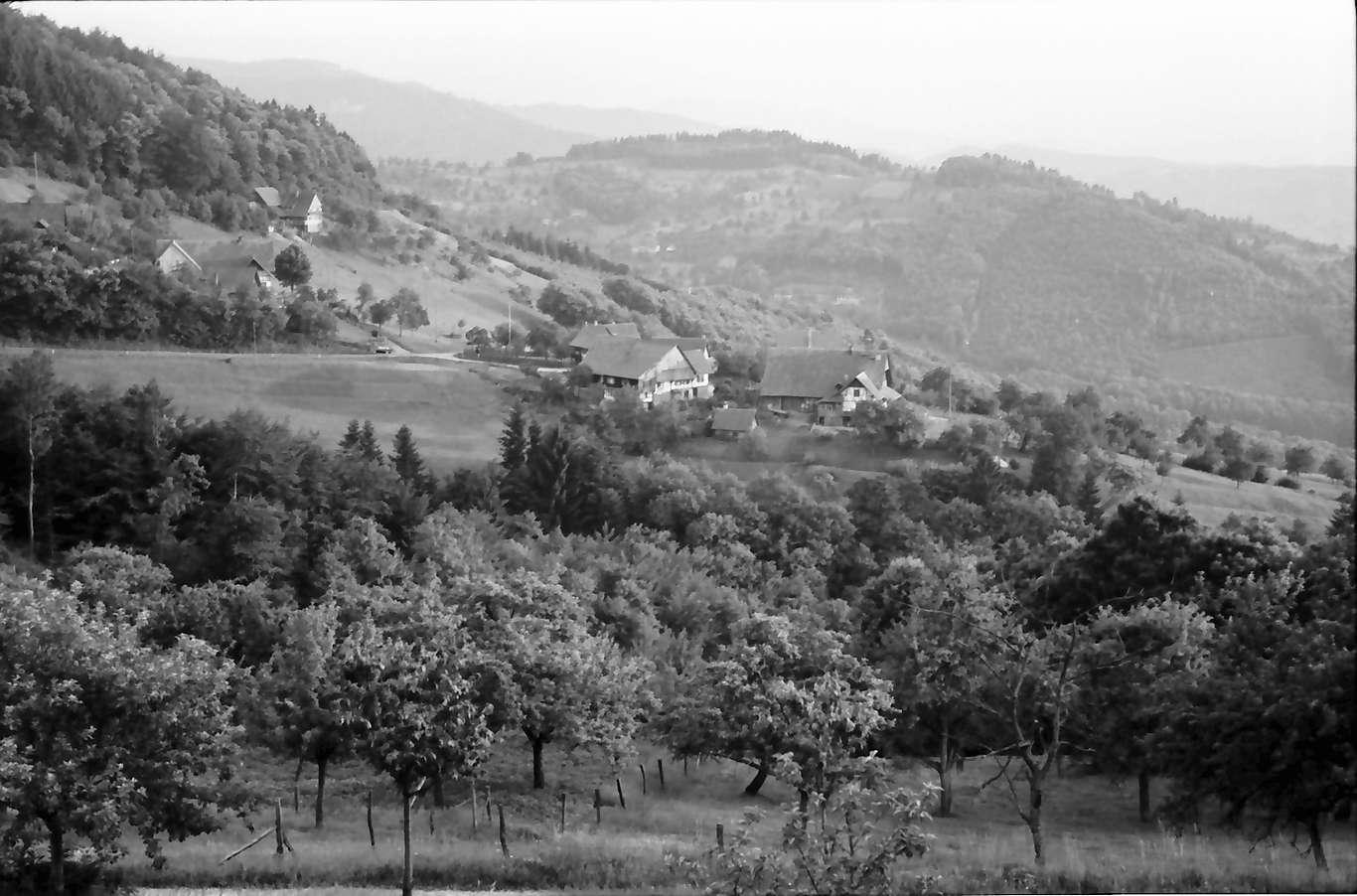 Sasbachwalden: Höfe im Tal, Bild 1
