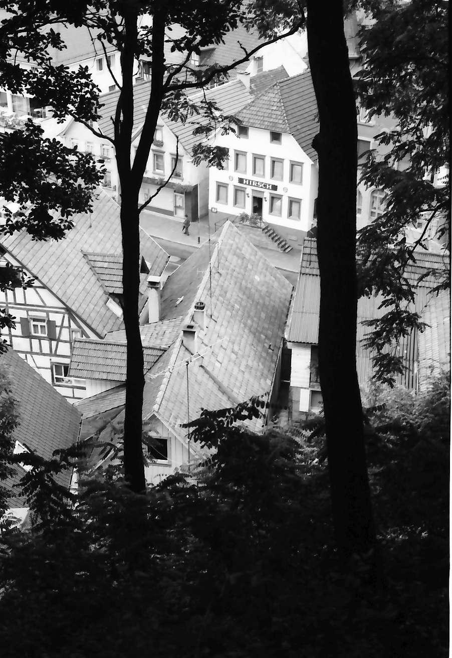 Oppenau: Durchblick durch Wald auf alte Häuser, Bild 1