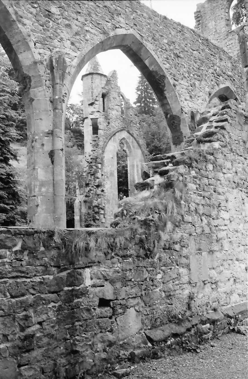 Allerheiligen: Klosterruine Allerheiligen, von außen, seitlich, Bild 1