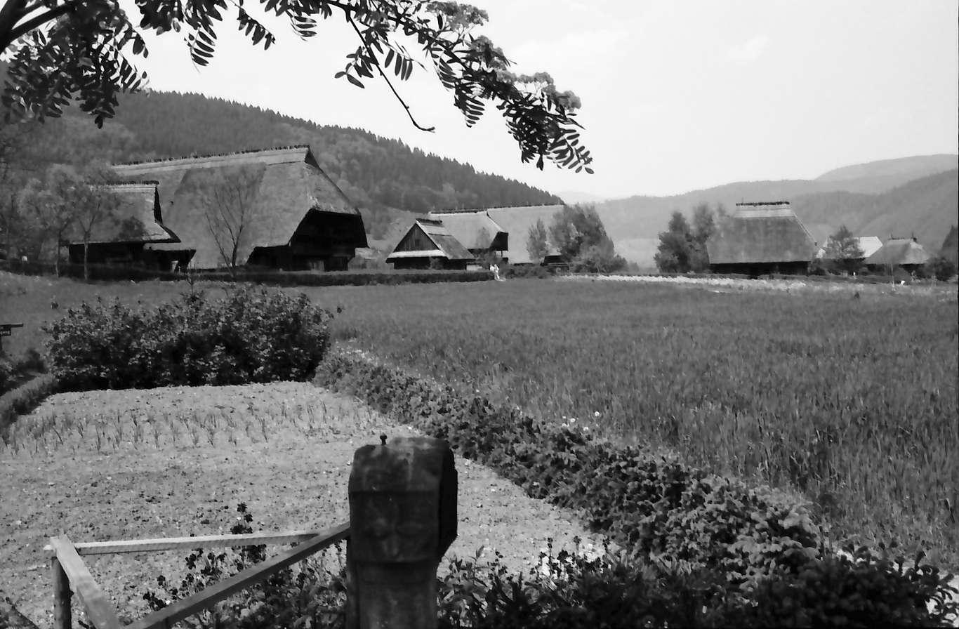 Gutach: Vogtsbauernhof; Gesamtansicht vom Hippenseppenhof aus, Bild 1