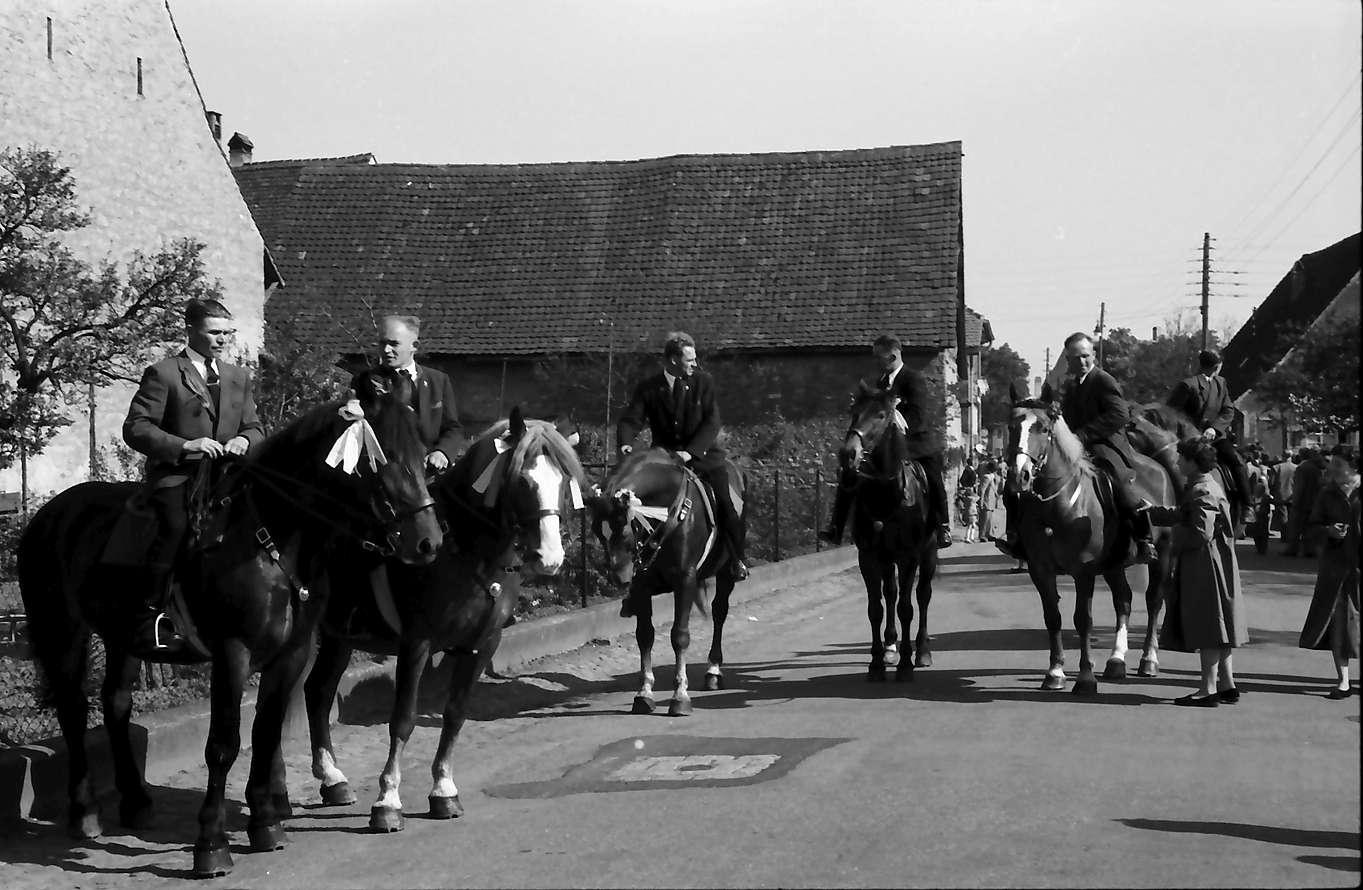 Freiburg; St. Georgen: St. Georgsritt; Pferde mit Reitern sammeln sich auf der Straße, Bild 1