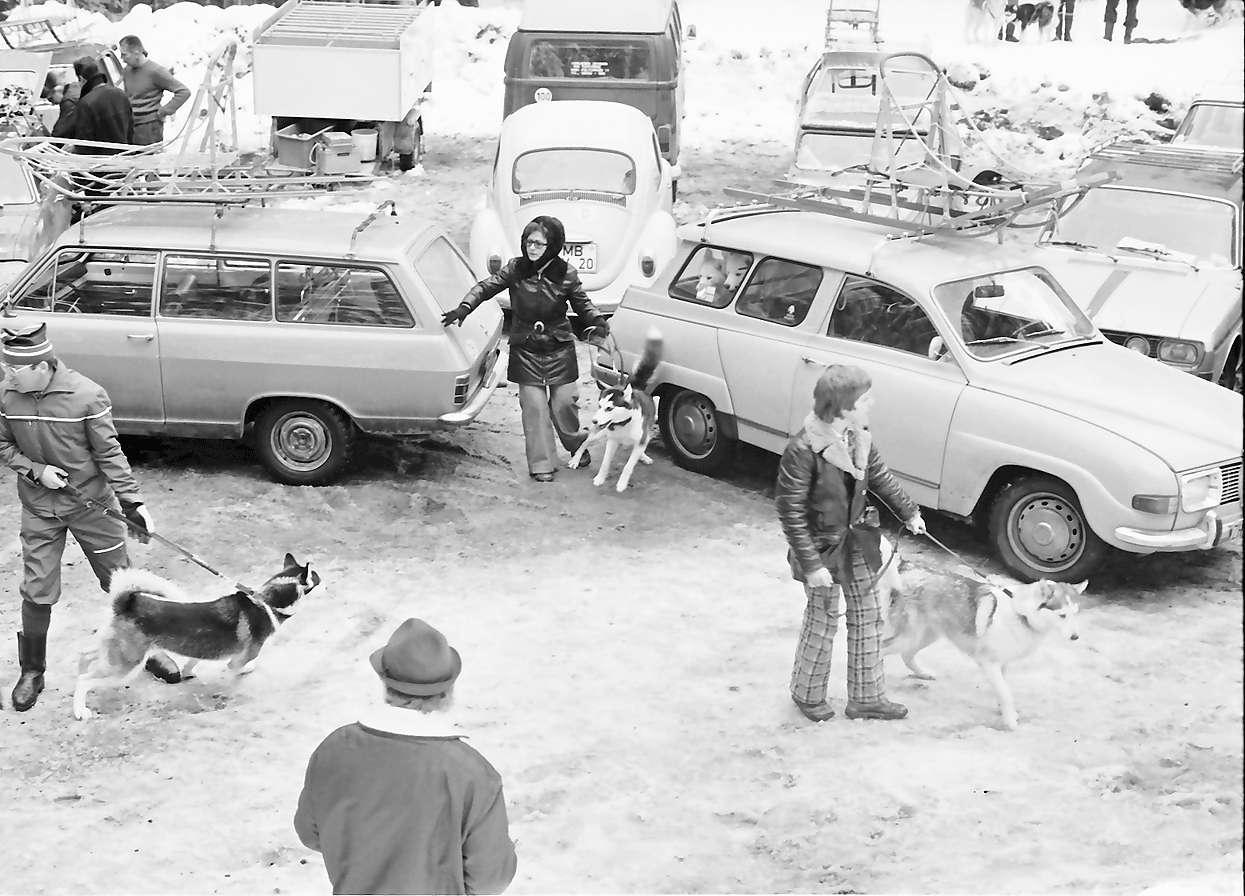 Todtmoos: Schlittenhunderennen; Parkplatz mit Hundezwinger, Bild 1