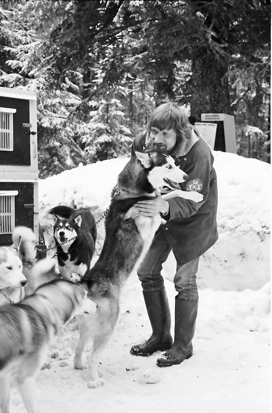 Todtmoos: Schlittenhunderennen; Autoanhänger als Hundezwinger, Bild 1