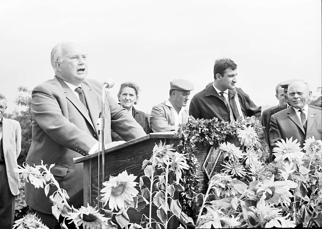 Neuenburg-Chalampé: Einweihung der Brücke Neuenburg-Chalampé; Bundesverkehrsminister Seebohm bei Ansprache, Bild 1